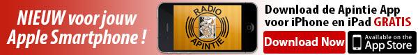 Apintie App