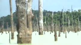 Bewoners Libidotie te Sarakreekgebied trekken aan de bel...